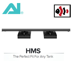 Aqua Illumination HMS Rail - 48""