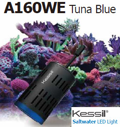 Kessil a160we Tuna Blue Controllable