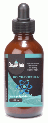 Polyp Lab Polyp-Booster (100ml)